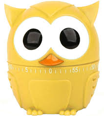 kitchen timer owl in kitchen timers
