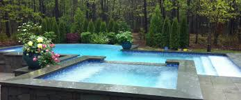 Amazing Pools Congratulations To Patrick U0027s Pools On Nespa Spa Of The Year