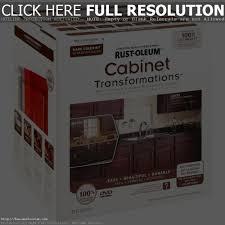 kitchen cabinet kits kitchen decoration