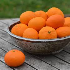 organic fruit delivery organic clementine mandarins organic fruit delivery