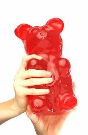 ~gummy bear land~ gummy bear RP only Images?q=tbn:ANd9GcRTwLZlsIWI5HAkpl4RFGBIqkiTAFHEc-095RppU6lbyvLJf_M&t=1&h=206&w=135&usg=__vodBynL206kyruSLGBYwHvTy2jA=