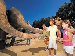 Orlando Zoo And Botanical Gardens Spotlight Central Florida Zoo And Botanical Gardens Al S