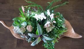 How To Arrange Indoor Plants by Homegoods Potted Plants