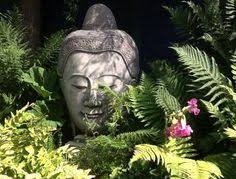 buddha gardens in the the hosta places its