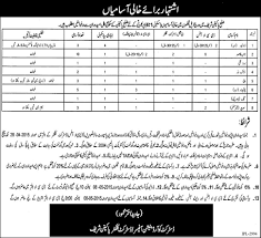 district government pakpattan sharif jobs qualification for driver