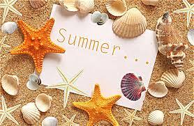 summer sand shells starfishes seashells hd wallpaper