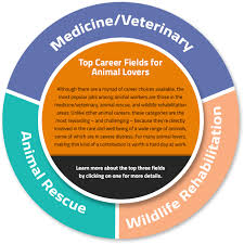 What Does Career Field Mean On A Resume A Guide To Animal Careers Learnhowtobecome Org