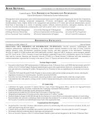 Director Of It Resume Cover Letter Example Resume It Example Resume It Specialist