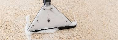 Rug Shampooer Walmart Best Carpet Cleaner Buying Guide Consumer Reports