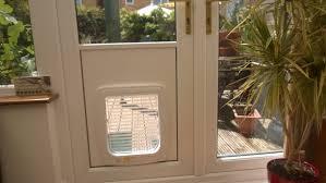 cat doors for glass doors ing cat flap in glass door