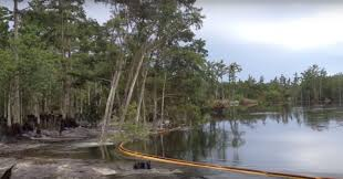 Sinkholes In Florida Map by Video 26 Acre Louisiana Sinkhole Swallows Whole Trees In 30