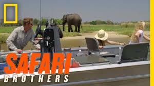 okavango river safari safari brothers youtube