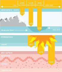uva and uvb light skin sins uv exposure