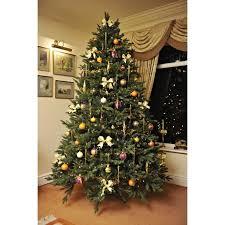 the 6ft woodland pine tree