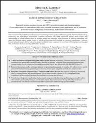 Sample Resume For Ceo by Resume Sample For A Ceo