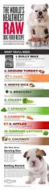 2523 best food for dogs images on pinterest raw dog food raw