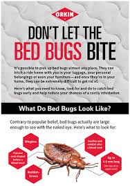 Dont Let The Bed Bugs Bite Take It From Me Don U0027t Let The Bed Bugs Bite Orkin U0027s Bed Bug