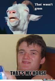 Stoned Meme - rmx that wasn t grass by memeguy219 meme center