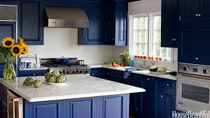 Interior Paint Colors Ideas For Homes Blue Kitchen Cabinets Home Design Ideas