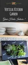 597 best herbs images on pinterest gardening herbs garden and
