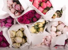 peonies delivery peony delivery from flower muse post peonies peonies and