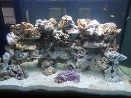 Aquascaping Rocks How To Aquascape Live Rock