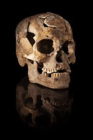 of ancient skulls suggest there may been migrations