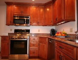 kitchen comely small l shape kitchen decoration using dark brown
