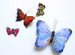 Butterfly Office Decor The Butterfly Effect Diy Butterfly Push Pins