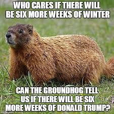 Six Picture Meme Maker - groundhog imgflip