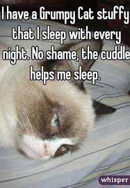 Grumpy Cat Sleep Meme - have a grumpy cat stuffy that i sleep with every night no shame
