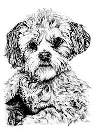 dog animals coloring pages for adults justcolor