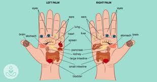 according to reflexology you can press these points on your palm to