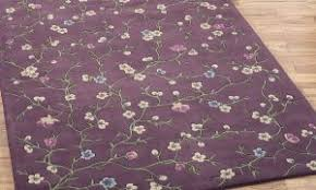 Eggplant Colored Area Rugs Eggplant Colored Area Rugs Decorating With Purple Teal