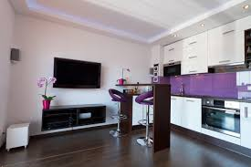 tiny kitchen remodel ideas kitchen ideas purple kitchen small kitchen design ideas kitchen