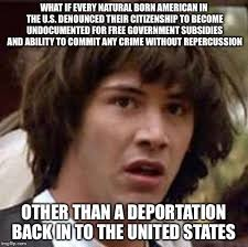 Meme Custom - n i c e natural immigrant custom enforcement imgflip