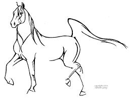 easy arabian horse drawings