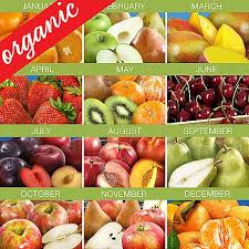 organic fruit delivery 6 months of organic fruit club with free weekday delivery