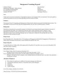 web design proposal samplesample consultant proposal template