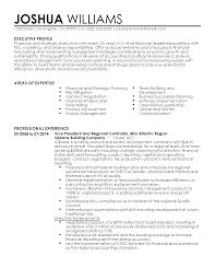 accountant resume indian format sample auditor resume audit night