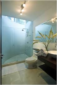 Tropical Bathroom Decor by Bathroom Tropical Bathroom Decor Nice Tropical Bathroom Ideas On