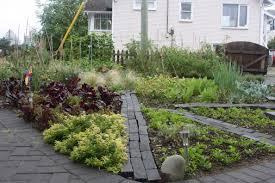 Australian Garden Ideas by The Front Yard Food Garden Today My Little City Food Garden