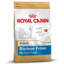 wszystko o bichon frise royal canin bichon frise w sklepie zooplus