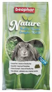 rabbit food nature rabbit food