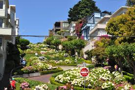 San Francisco Flower Garden by 1 Day San Francisco City Fully Guided Tour Taketours