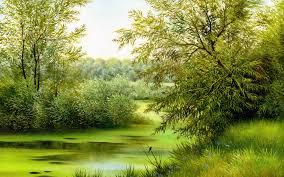 pretty trees so many pretty trees i see aspen falls plumbago so