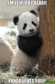 Panda Meme Mascara - panda bear memes image memes at relatably com