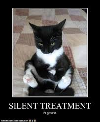 Silent Treatment Meme - question of the day us girls our views