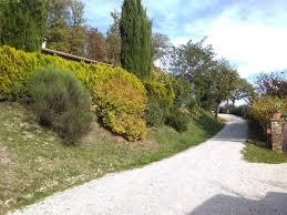 Selve Bed And Breakfast Calmancino Delle Selve Urbino Italy Booking Com