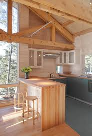 Stains For Kitchen Cabinets 8 Stunning Stain Colors For Kitchen Cabinets